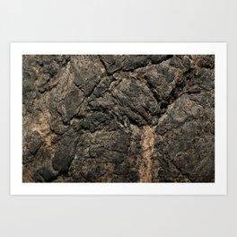 Gray Wall Jumper Art Print