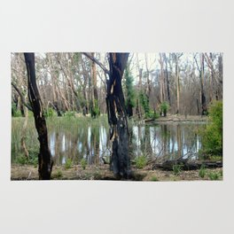 Reflecting after a bush Fire Rug