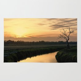 Beautiful scenic view of the sunset in the Ticino river natural park during fall Rug