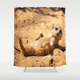 Meerkat Suricat suricatta Sunbathing #decor #society6 Shower Curtain