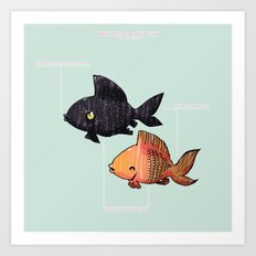 Anatomy Of A Goldfish Art Print