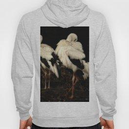 Storks Hoody