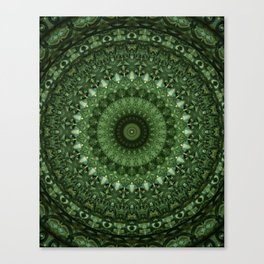 Mandala in olive green tones Canvas Print