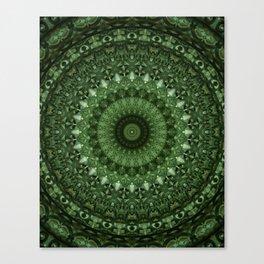Mandala in olive green tones Canvas Print