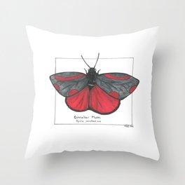Cinnabar Moth Throw Pillow