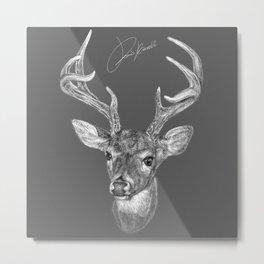 deer - cervo - cerf - ciervo Metal Print