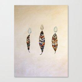 Medicine Feathers Canvas Print