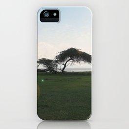 Acacia Field,Ethiopia iPhone Case
