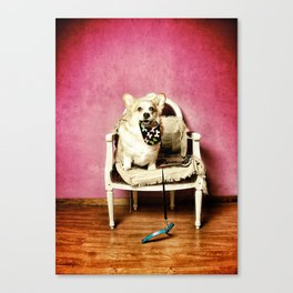 Who lets the dog out.....? Canvas Print