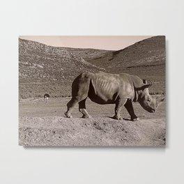 Rhino & Ostrich Metal Print