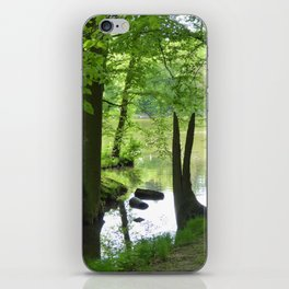 Forest with Creek scenery photo iPhone Skin