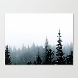 Cool Pines Canvas Print