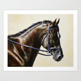 Dark Bay Dressage Horse Portrait Art Print