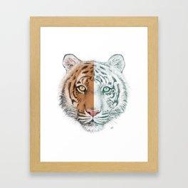 Tiger Split Framed Art Print