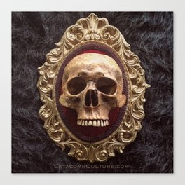 Catacomb Culture - Vintage Human Skull Canvas Print