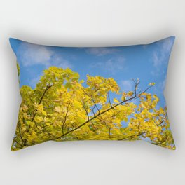 Autumn Colours On An October Morning Rectangular Pillow