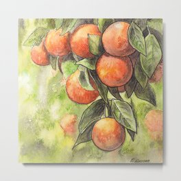 Orange Tree - ink and watercolor illustration Metal Print