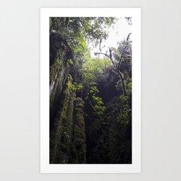 Winchead Cave Entrance I, Charleston, Buller, New Zealand Art Print