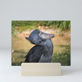Shoe-Billed Stork Mini Art Print