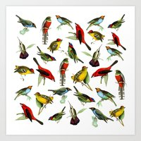 Vintage Bird  Art Print