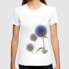 Echinops - Globe Thistles #1 #decor #art #society6 T-shirt
