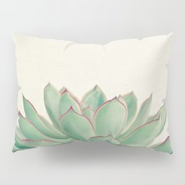 Echeveria Pillow Sham