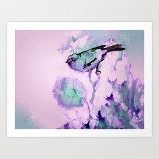 Finch Bird Art Print