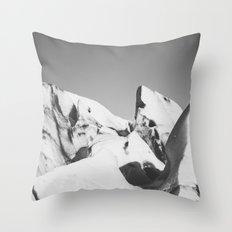 Ice, Ice, Iceland Throw Pillow