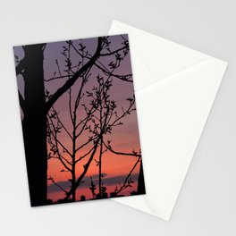 Sunset on April 11, 2017. Through the Trees VI Stationery Cards