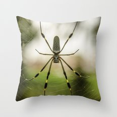 Autumn Spider Throw Pillow