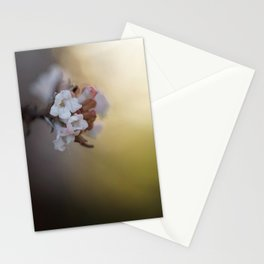 The Beauty of Levity. Stationery Cards