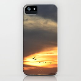 Birds in the Sunset iPhone Case