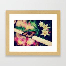 Butterfly :: Summer Beauty Framed Art Print