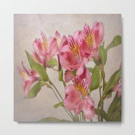 Pink Peruvian Lilies Alstroemeria Metal Print