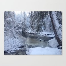 St-André river Canvas Print