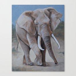 Ellie the Elephant Canvas Print