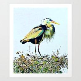 Great Blue Heron Treetop Art Print