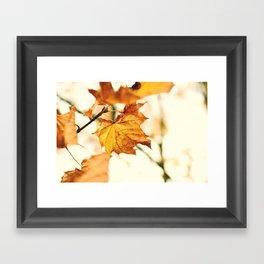 A Fall Like This Framed Art Print
