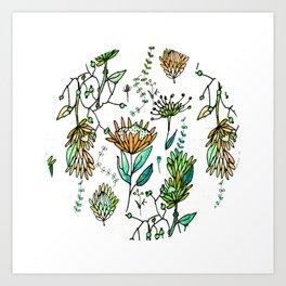 Protea Flower Orange #homedecor Art Print