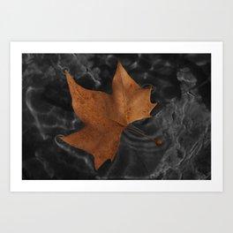 Leaf on dark water Art Print