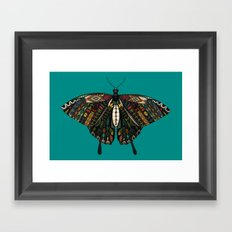swallowtail butterfly teal Framed Art Print