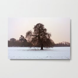 Early Morning Houghton Hall Park Metal Print