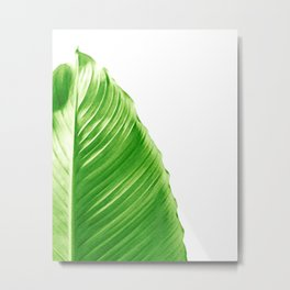 Philodendron Piece Metal Print