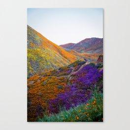 Super Bloom 2019 Canvas Print