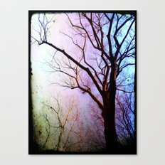 Earth Garden Canvas Print