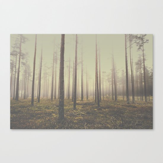 The day we lost Canvas Print