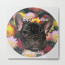 ziggy dog Metal Print