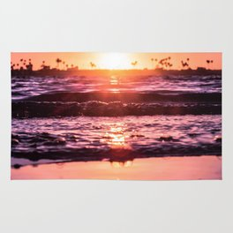 Mission Bay Shoreline in San Diego, California Rug