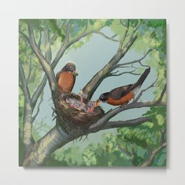 Robin Nest Metal Print