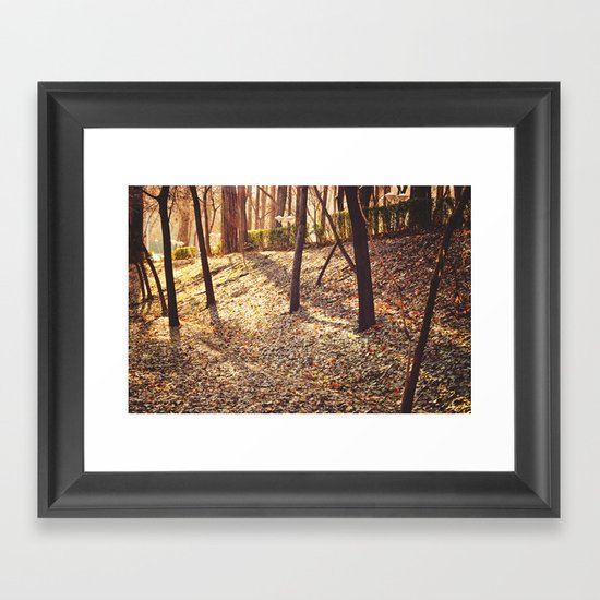 Bed of Leaves Framed Art Print